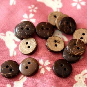 Cúc gỗ dừa
